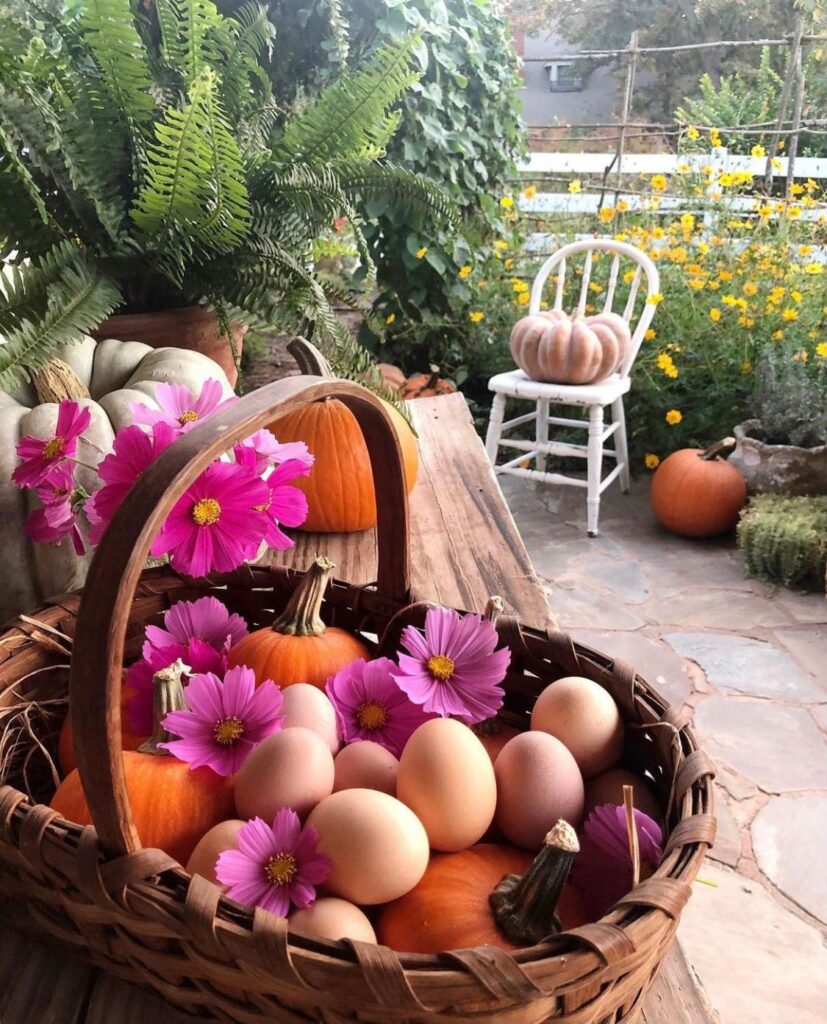 A basket of fresh eggs provided by our backyard chickens.