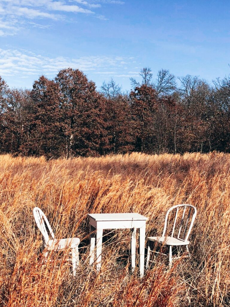 Vintage table and two chairs in a field.