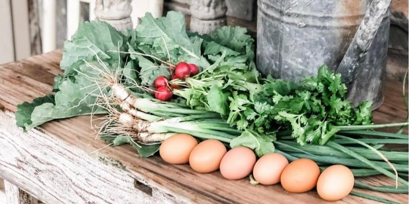 Cool Season Vegetables and Eggs