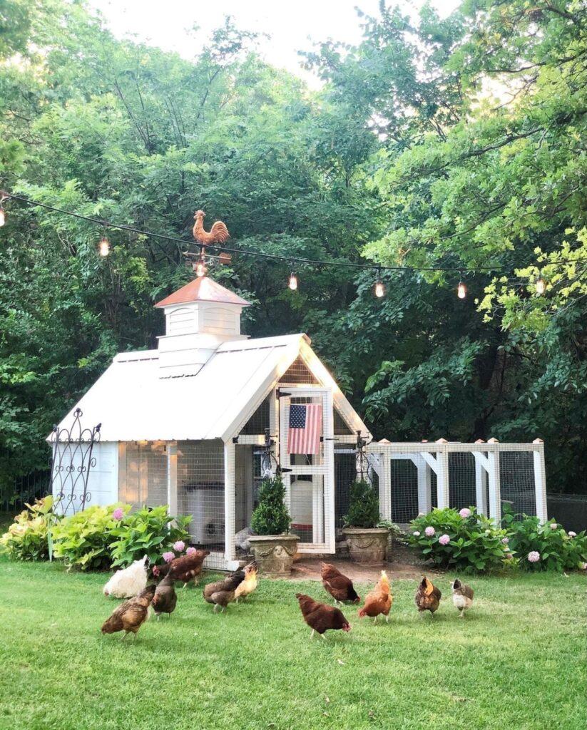 Custom Chicken Coop at Elevengables