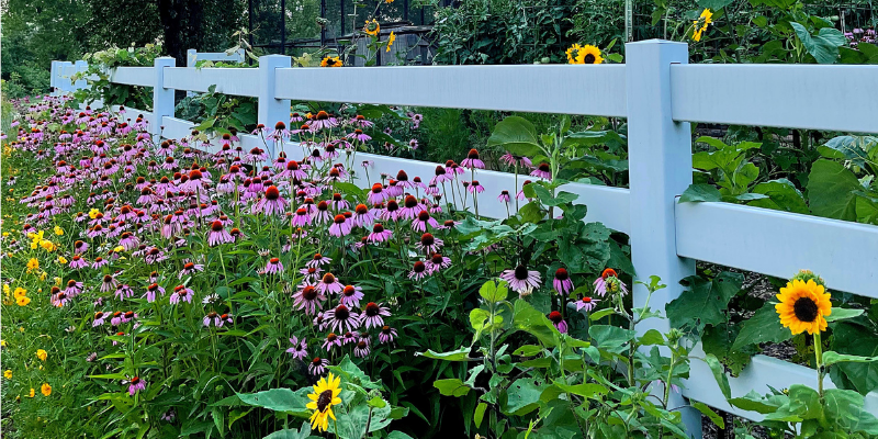 living in the country tour revisited: a gardener's dream